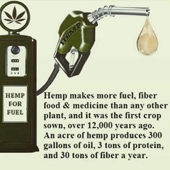 Hemp for Fuel