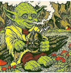 Yoda smoking Darth bong